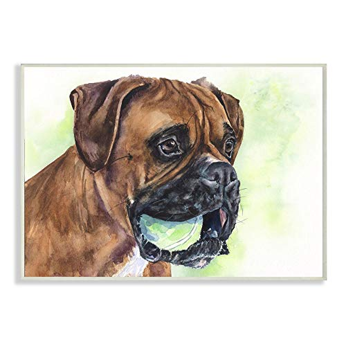 Stupell Industries Boxer with Ball Dog Pet Animal Watercolor Painting Wall Plaque, 13 x 19, Design by Artist George Dyachenko
