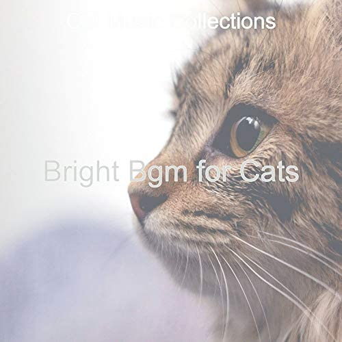 Cat Music Collections