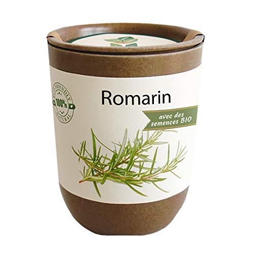 Feel Green Ecocan, Romarin Certifiées Bio, Idée Cadeau (100% Biodégradable), Grow-Your-Own/Kit Prêt-à-Pousser, Le Pot Écologique Qui Croît 9 x 7 cm, Produit en Autriche