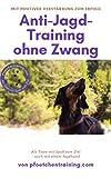 Anti-Jagd-Training ohne Zwang: Mit positiver Verstärkung zum Erfolg