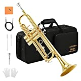 Eastar Bb Trumpet Standard Trumpet Set for Student Beginner with Hard Case, Cleaning Kit, 7C Mouthpiece and Gloves, Brass Bb Trumpet Instrument, Golden, ETR-380