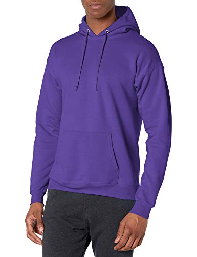 Hanes Men's Pullover Ecosmart Fleece Hooded Sweatshirt, purple, Small