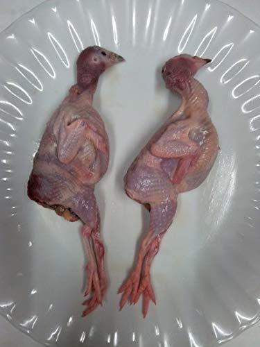 うずら中抜き 120羽入り 冷凍│国産 ベトナム料理 うずら うづら肉【愛知県産】