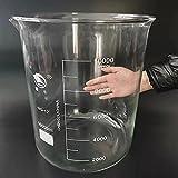 WUTINGKONG Frascos de Laboratorio de 1 unids/Set High Quakity 10000ml Vidrio de Vidrio Graduado de Vidrio de Vidrio de borosilicato Transparente Ciencia de la Industria (Capacity : 10000ml)