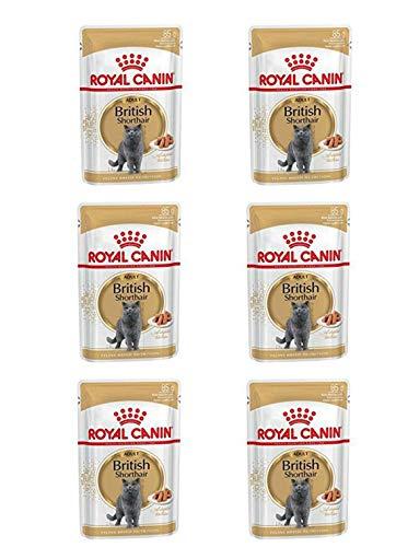 Royal Canin- 6 x Katzenfutter 85g British Shorthair