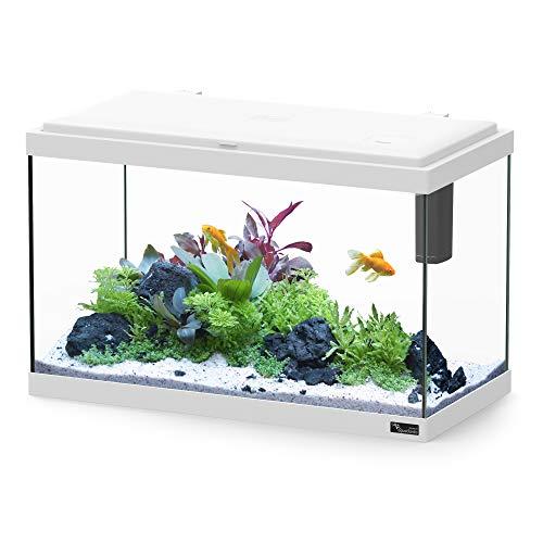 Aquatlantis Aquarium Explorer Rome Weiß, 1er Pack (1 x 4880 g)