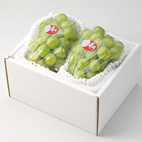 ぶどう 桃太郎ぶどう 青秀 約500g×2房 岡山県産 香川県産 桃太郎ぶどう生産組合 お中元 葡萄 ブドウ