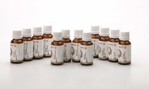 Schüssler Salze 12er Set Globuli Nr. 1-12, 12x20 g