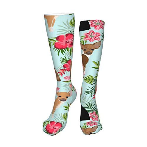 Chihuahua Hawaii Florals Hibiscus Dog Blue Calcetines para hombre y mujer, 50 cm Bota calcetín para correr, deportes, al aire libre