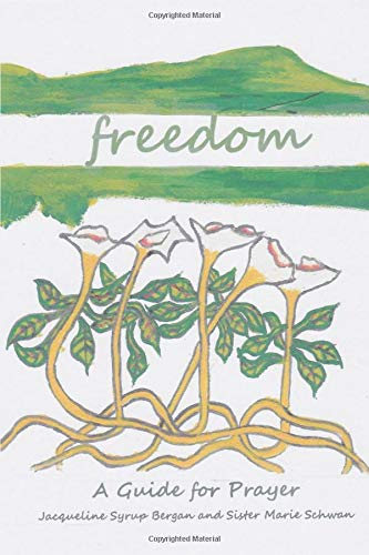 Freedom: A Guide for Prayer (Take and Receive, Band 5)