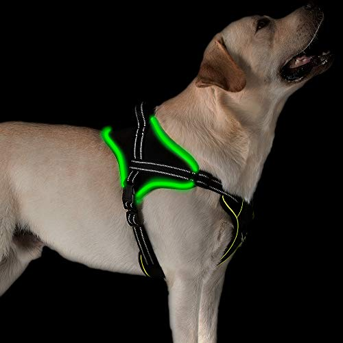 Golener Dog Harness No Pull, Reflective Puppy Harness with Led Light, Adjustable Dog Vest Harness, Soft Breathable Oxford Stylish Pet Harnesses with Easy Control Handle for Large Dogs(Black,XL)