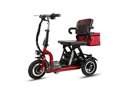 Mini Coche Eléctrico Plegable de Motocicleta, Coche Eléctrico Mini Pedal de Tres Ruedas para Adultos, Coche de Batería de Litio Portátil Plegable de Viaje, Bicicleta de Viaje de Motocicleta