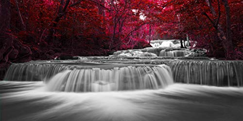 Home Wall Art Décor of Wide Waterfall and Red Leaves,Maple Leaves Canvas Prints Pictures Painting Artwork,Beautiful Black White and Red Landscape Paintings