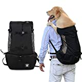Best Dog Backpacks - Woolala Dog Backpack Carrier Rucksack Puppy Head Out Review