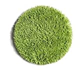 1 cabezal abrillantador de repuesto para limpiadora, para suelos de microfibras: para pulir suelos, parqué, o encerado de parqué perfeccionará la limpieza y el acabado de los suelos.