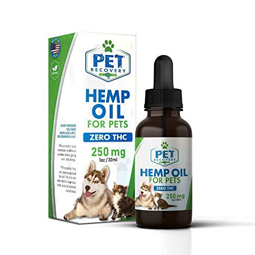 Pet Recovery Rx Natural 250mg Hemp Oil Drop for Pets - 1ml / 30oz Bottle -...