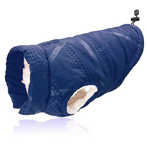Didog Warm Hond Winterjas, Koud Weer Jas Zachte Warm Winddichte Puppy Vest Kleding voor Kleine Medium Honden, L size: chest-51cm; back length-34cm, Blauw
