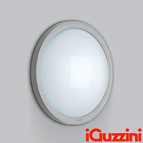 iGuzzini B841 iFace Grigio Applique Plafoniera 46W Fluroscente per Esterno