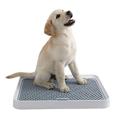GGBOY Cachorro de Inodoro Mascotas Orinal para Perros,Bandeja Sanitaria de Malla, Suministros De Limpieza para Mascotas, 52 X 39 X 4.7 cm