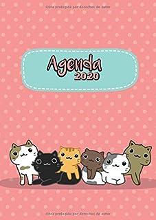 Amazon.es: agenda gatos