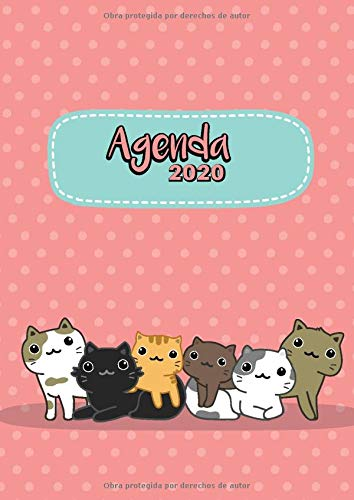 Agenda 2020: Tema Gatos Kawaii Rosa Agenda Mensual y Semanal...