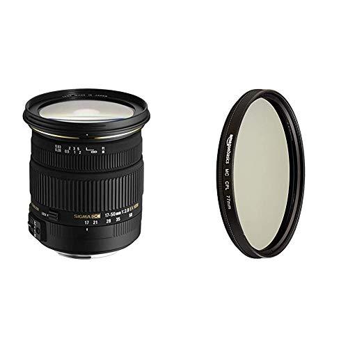 Sigma 17-50 mm F2,8 EX DC OS HSM-Objektiv (77 mm Filtergewinde, für Nikon Objektivbajonett) & AmazonBasics Zirkularer Polarisationsfilter - 77mm