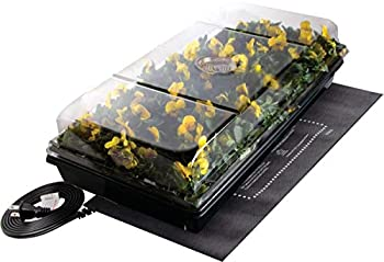 Best germination station Reviews