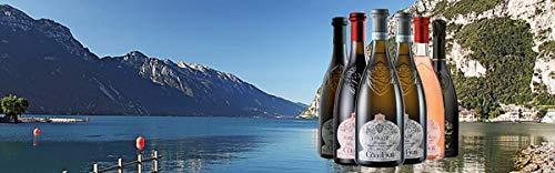 Rosenwein-Rosa-dei-Frati-Riviera-del-Garda-Classico-Doc-2019-Weingut-Ca-dei-Frati-12-Flaschen
