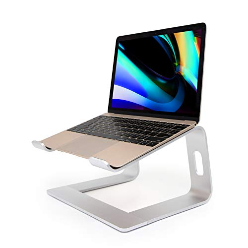 Laptop stand,Ergonomic Notebook Stand,Aluminum Removable Laptop Holder, Dismountable Ventilation Holder,Riser for MacBook ProAir,HP,Dell,Lenovo,Samsung,HUAWEI,all 10'~17.3' Notebooks (Silver)