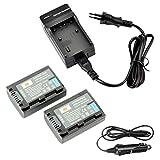 DSTE®(2 Pack)Ersatz Batterie und DC04E Reise Ladegerät Compatible für Sony NP-FH50 DSLR-A290 DSLR-A330 DSLR-A380 DSLR-A390 DSC-HX1 DSC-HX100V DSC-HX200V HDR-TG5V HDR-TG1E HDR-TG3 HDR-TG5 HDR-TG7