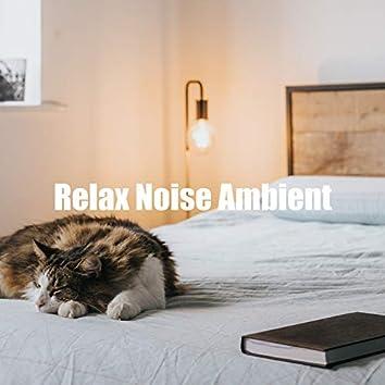 Relaxing Brownian Noise
