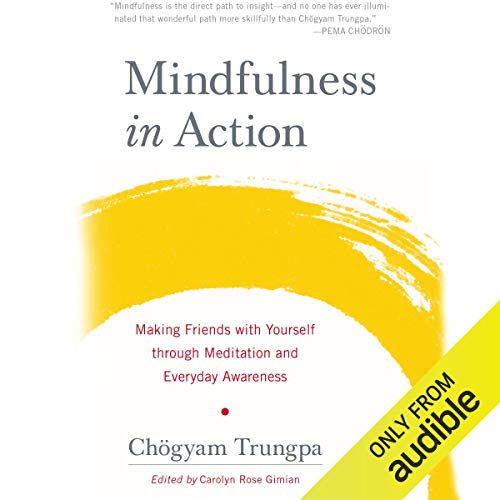 Page de couverture de Mindfulness in Action