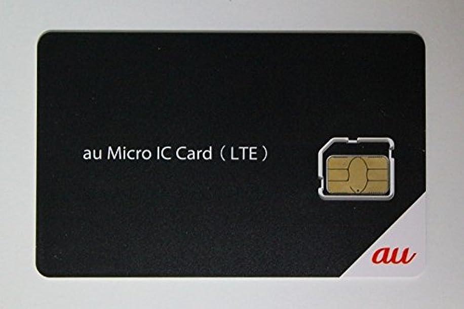 温度計どのくらいの頻度で分類auデータSIM IC card (LTE)容量無制限使い放題!(au端末対応) (Micro SIM, 12ケ月使い放題)