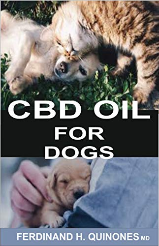 CBD OIL FOR DOGS: A COMPLETE GUIDE ON HOW TO USE CBD OIL O TREAT DOGS