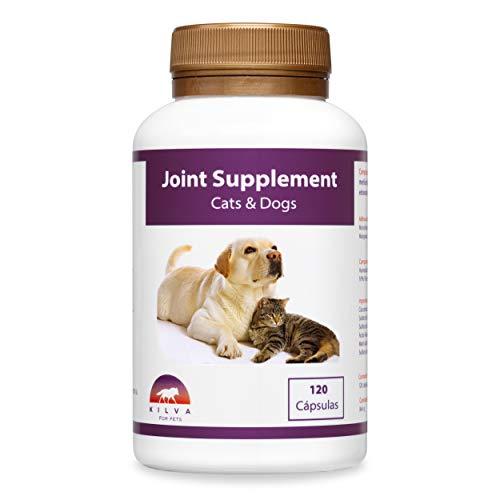 Kilva Suplemento antiinflamatorio Natural para Perros y Gatos, 120 cáp. Condroprotector. Condroitina, Glucosamina, Ácido hialurónico, Cúrcuma, MSM, Manganeso ⭐