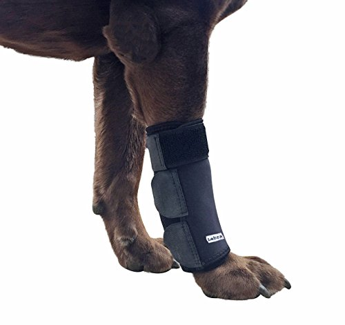 Labra Dog Canine Front Leg Compression Wrap Sleeve Protects Wounds Brace Heals and Prevents Injuries...