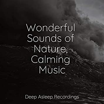 Wonderful Sounds of Nature, Calming Music