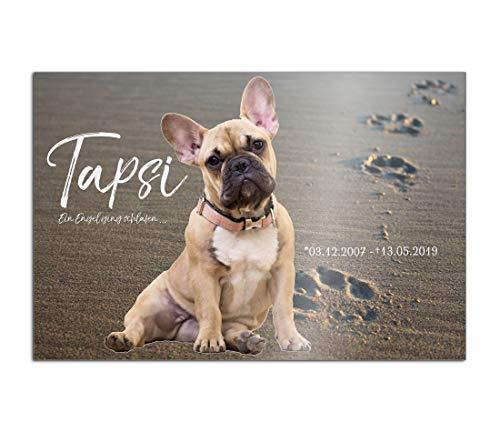 CHRISCK design Premium Tier Grabstein aus edlem Hochglanz Acrylglas   100% witterungsbeständig Grabplatten mit Foto Bild UV Druck 30x20 cm Gedenktafel für Haustiere Hunde Hund Katze