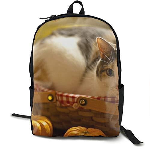 Katzenkorb, Liegekorb, Kürbis-Neugierigkeit, Schulrucksack, Büchertasche, Reisen, Laptoprucksack für Kinder, Studenten, Erwachsene
