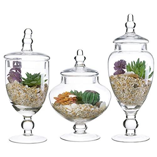 Diamond Star Set of 3 Clear Glass Apothecary Jars, Decorative Weddings Candy Buffet Display Elegant Storage Jar (H: 8', 10', 12')