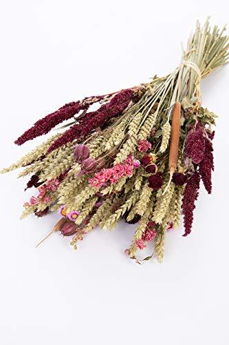 Sense of Home Trockenblumen Soft Blush - trendige und moderne Natur Deko aus getrockneten Blumen und Gräsern - pflegeleichter und langlebiger Trockenblumenstrauß - Naturprodukt aus Europa