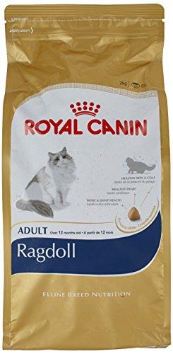 ROYAL CANIN Katzenfutter Ragdoll 2 kg, 1er Pack (1 x 2 kg)