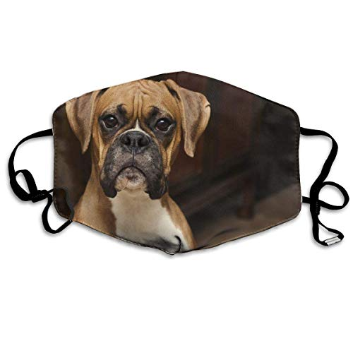 Mouth Cover Boxer Dog Pattern Anti Dust Reusable Colorful School Unisex Washable Fashion Design Mouth Cover Printing Park Beautiful Adult Cozy Outdoor Comfortable 11X18Cm