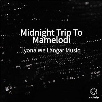 Midnight Trip To Mamelodi