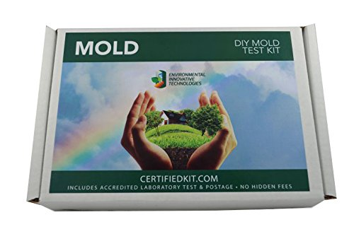 Professional Mold Do It Yourself Test Kit by EIT – Prepaid Lab Testing and Shipping Perfect for Your Home or Business, Single Pack