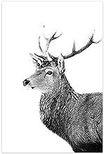 Zwart-Wit Natuurlijke Landschap Poster Nordic Boot Lake Mountain Scandinavische Canvas Wall Art Frameless50X70Cm P222