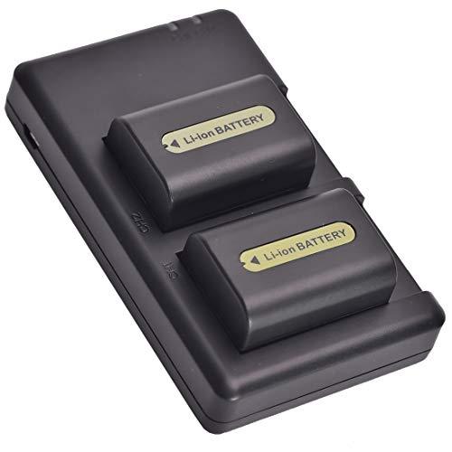 DSTE 2-Stück Ersatzakku Set NP-FH50 Batterie + Dual-Ladegerät USB kompatibel mit Sony DSLR-A230 DSLR-A290 DSLR-A330 DSLR-A380 DSLR-A390