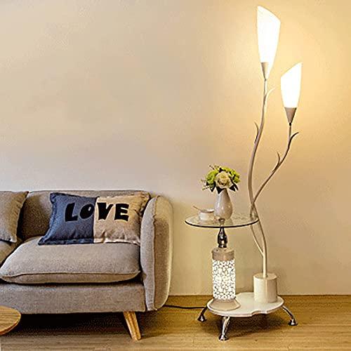Moderno Lampara De Pie con Pantalla De Lámpara Acrílica, Luz Ambiental Suave Luz De Lectura, Decoración De La Sala De Estar/Dormitorio (Color : A)