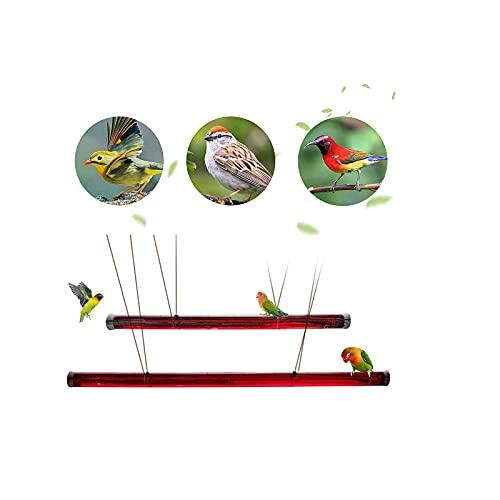 ZHFYY New Annas Bester Kolibri-Feeder mit Lochvögeln, die transparentes Rohr füttern Einfach zu bedienender Bird Feeder Red 60cm