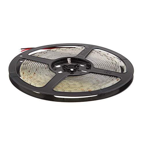 ZKS-KS DC12V 5M Waterproof Flexible LED Tape Rope Stripe Strip String Light